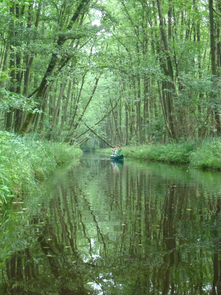 paddling down tze river