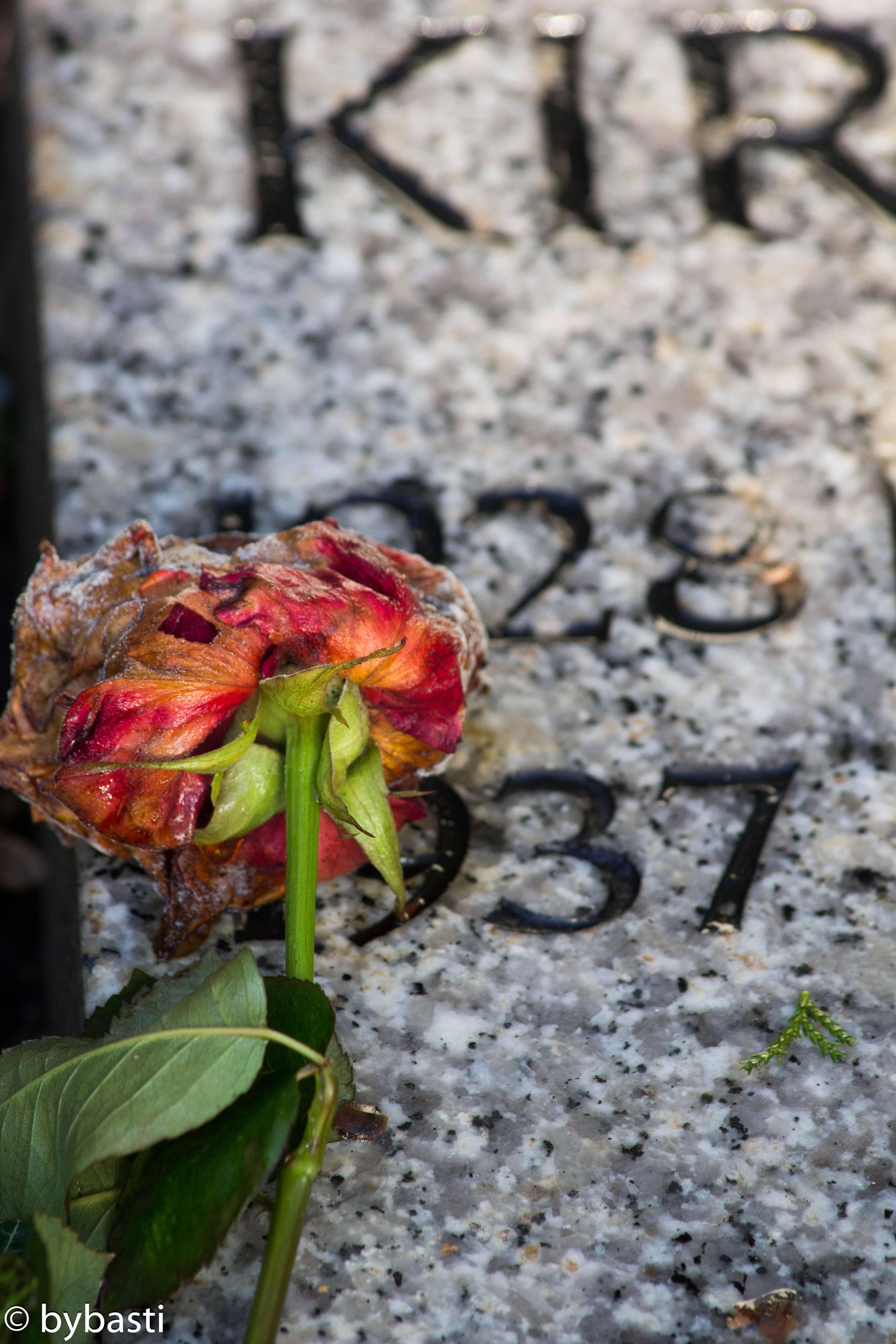 Hamburg Ohlsdorf cemetery -28