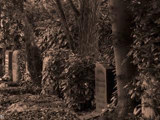 Hamburg Ohlsdorf cemetery -07