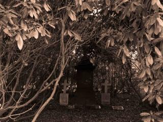 Hamburg Ohlsdorf cemetery -10
