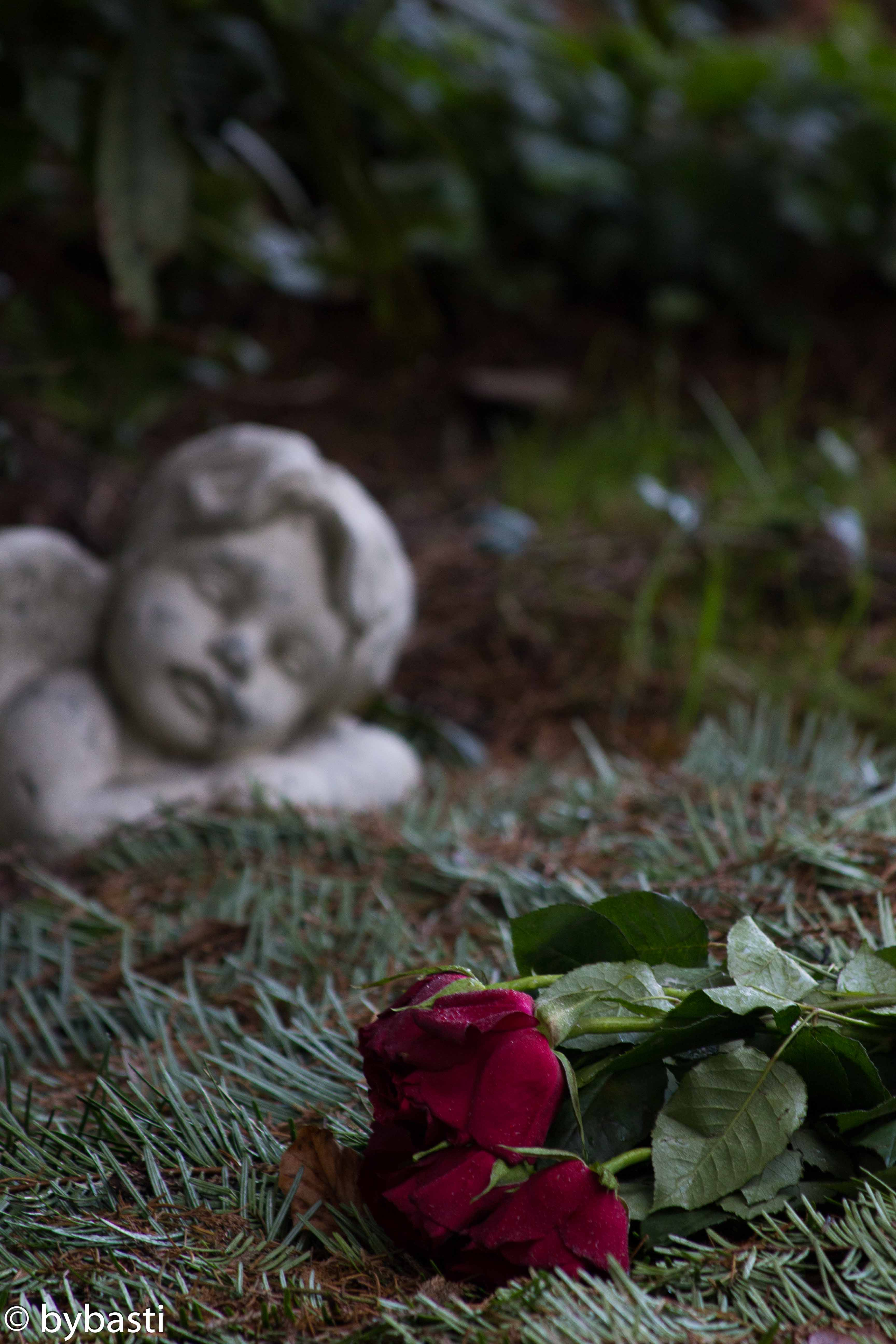 Hamburg Ohlsdorf cemetery -12