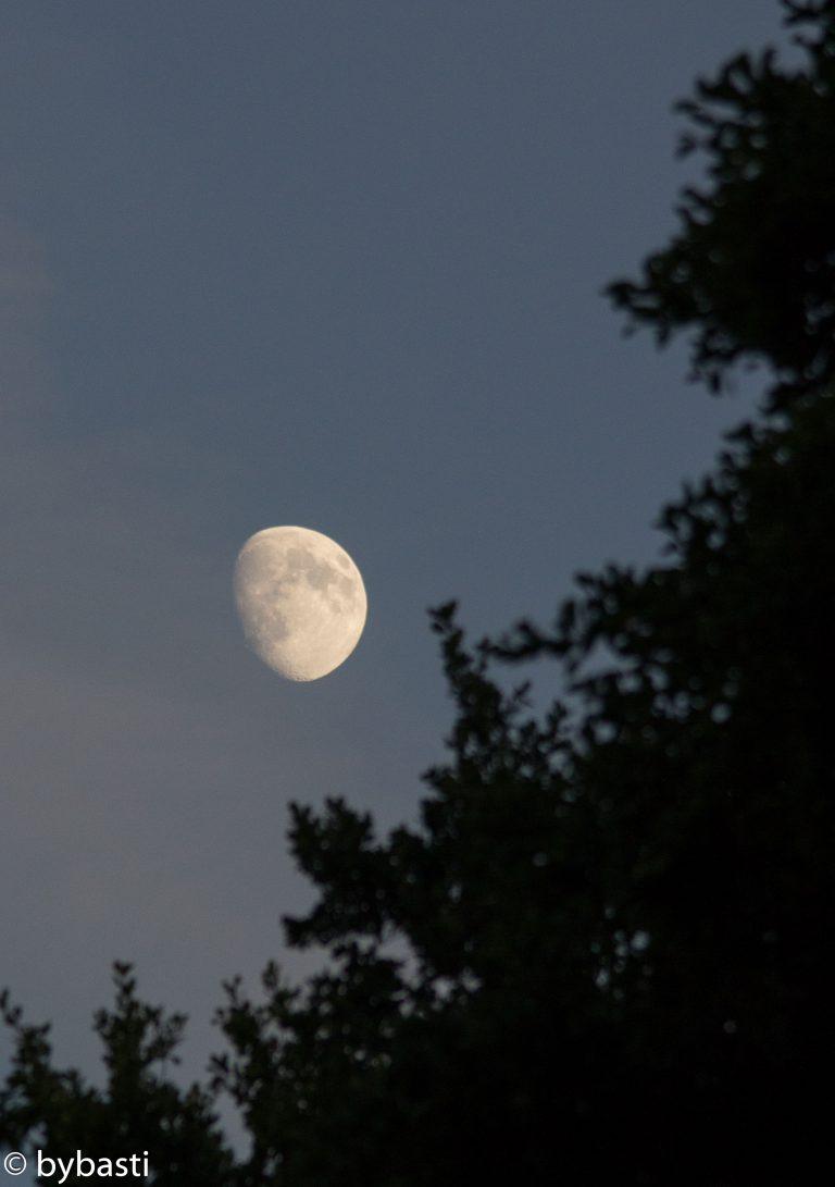 Moon 07