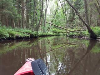 Kanufahren Canoeing 002