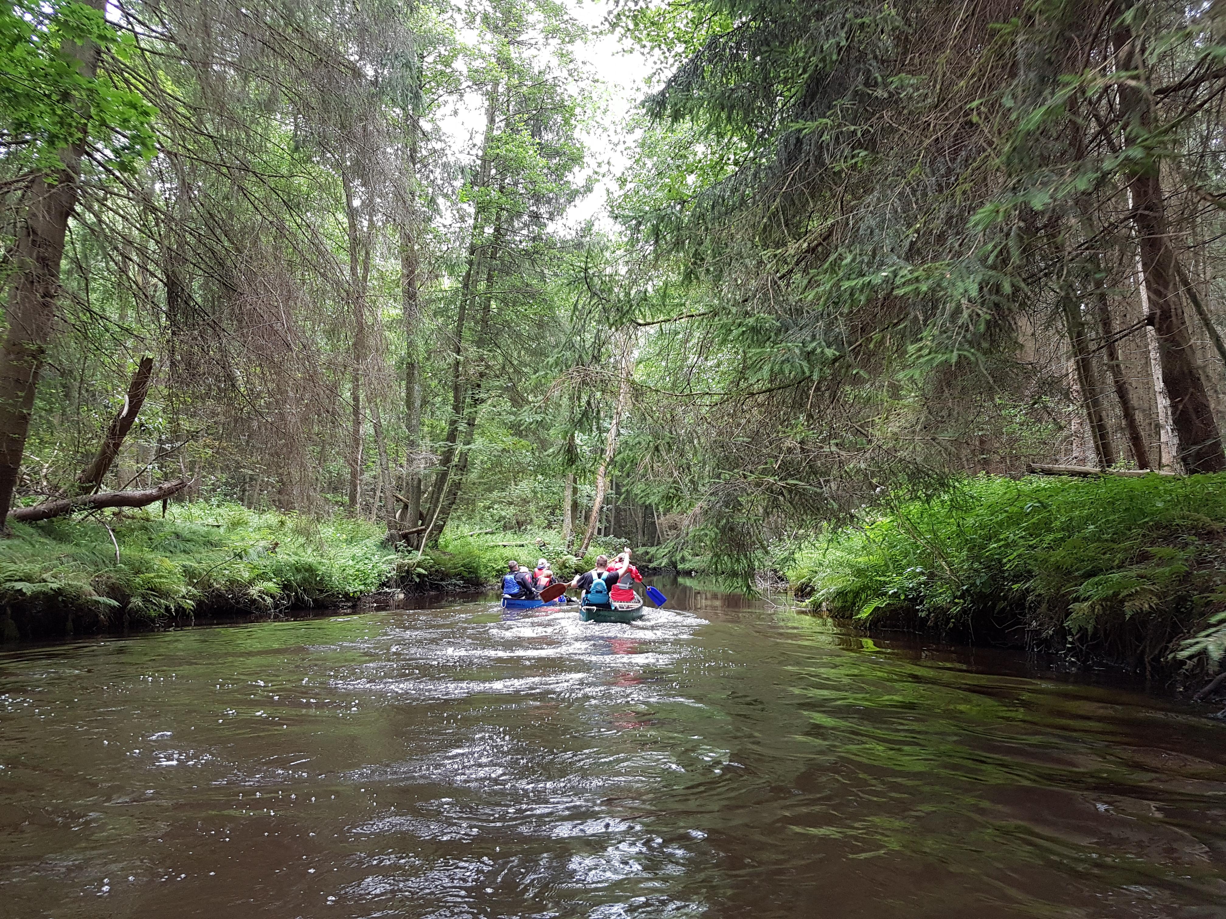 Kanufahren Canoeing 003