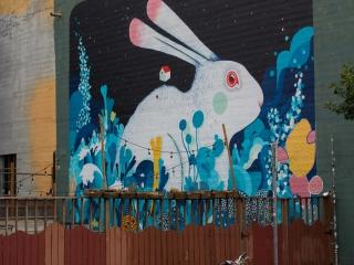 street art_13