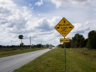 Florida 87