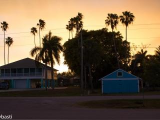 Florida 39