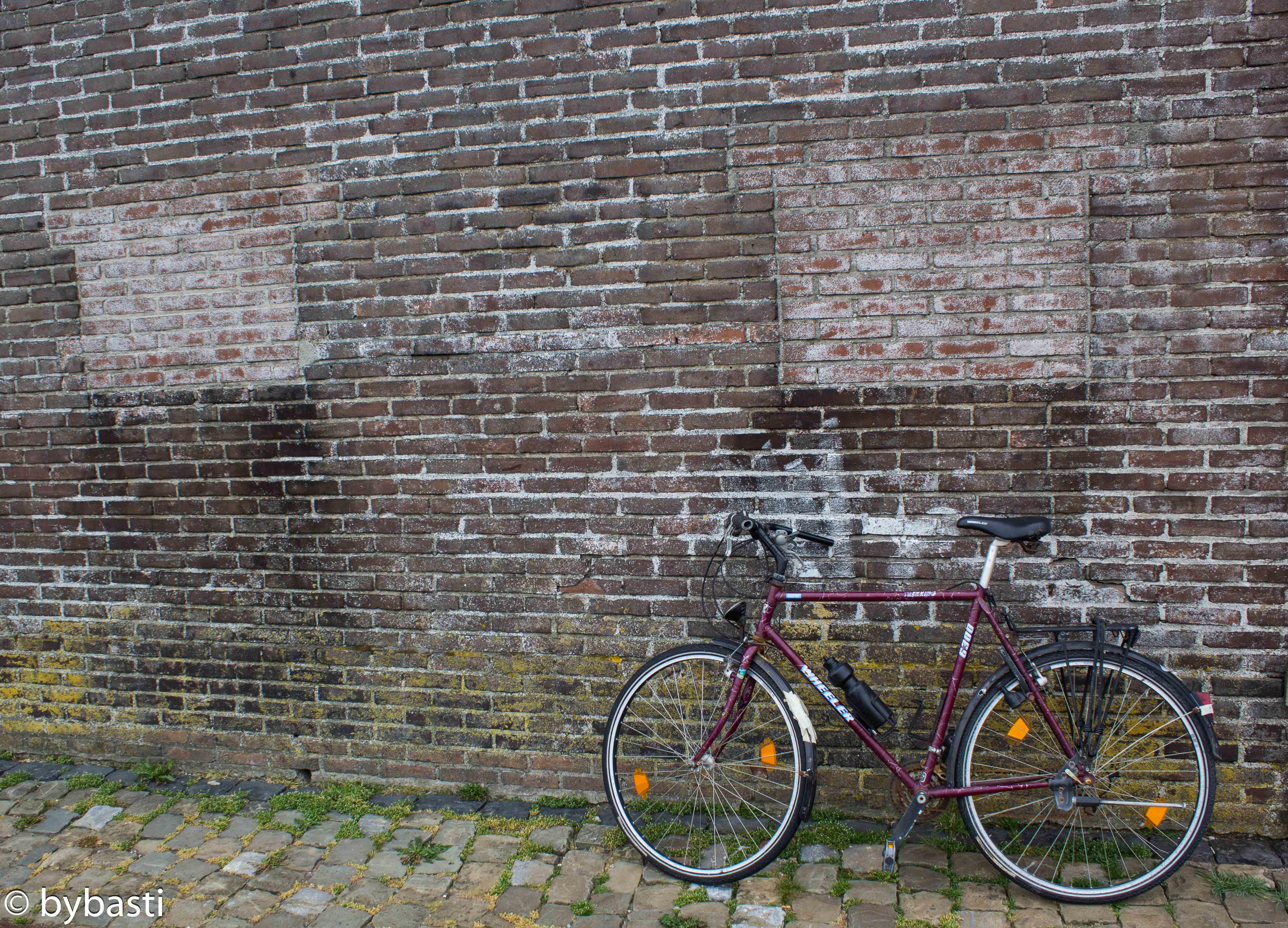Friesland 06