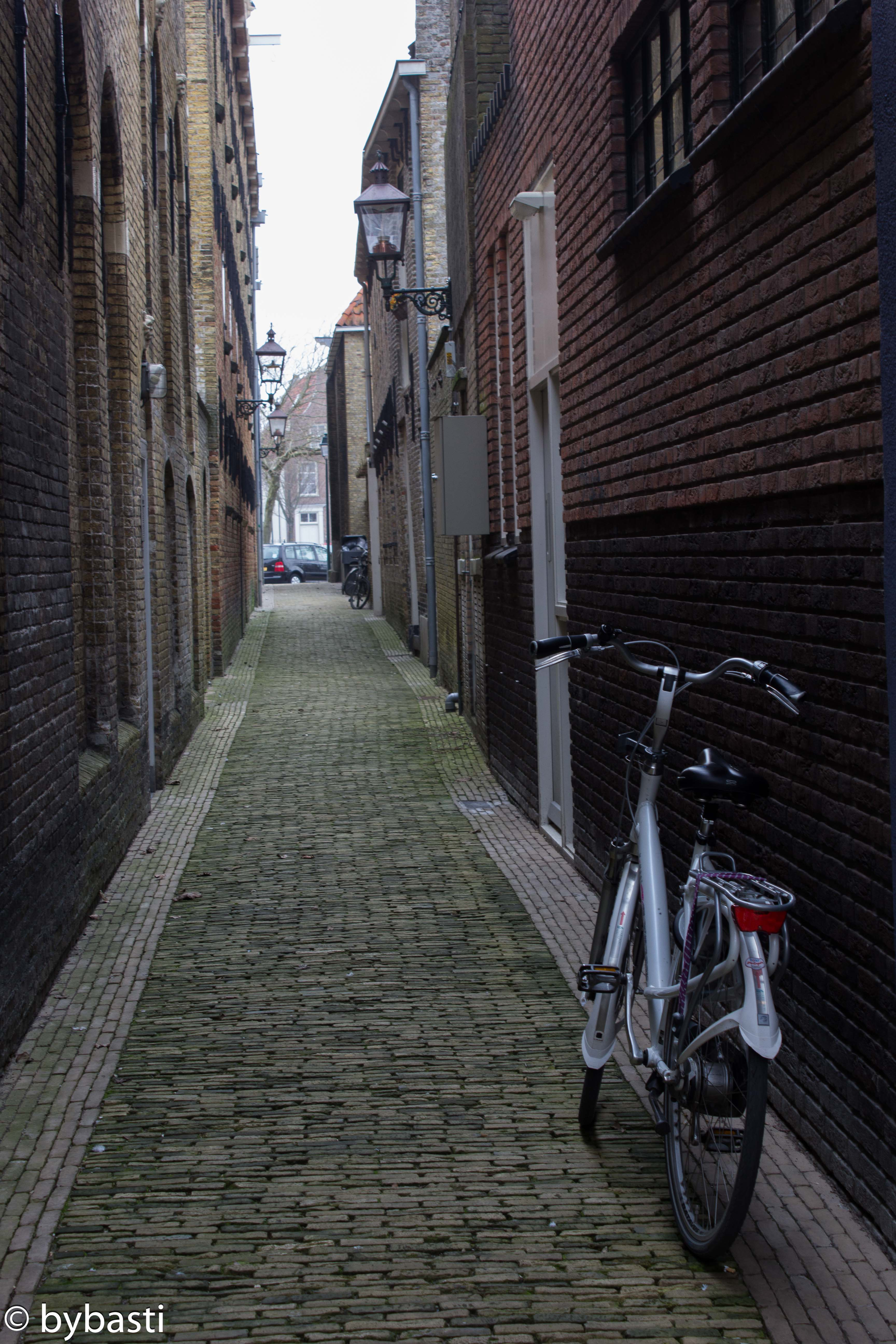 Friesland 11