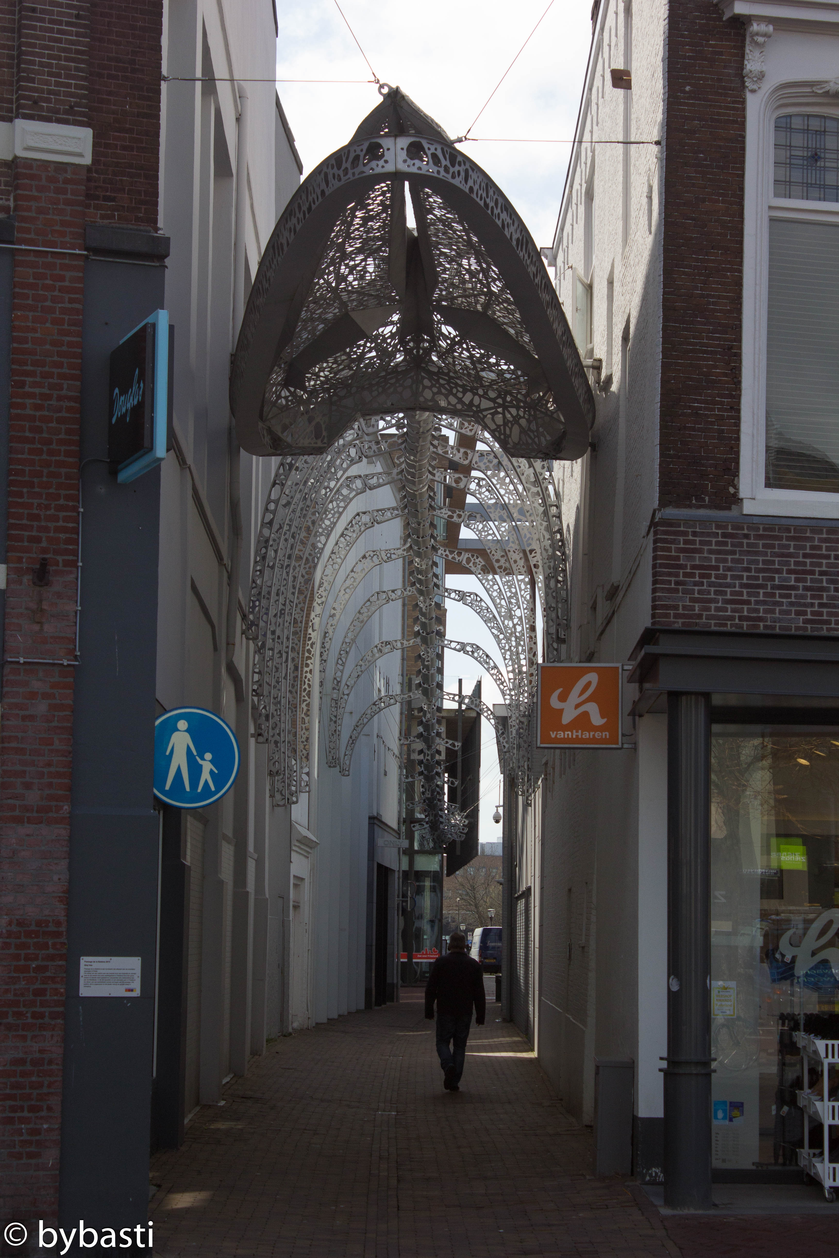 Friesland 28