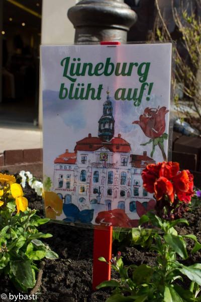 Lueneburg11