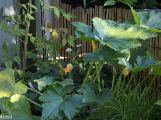 Photos of July _011