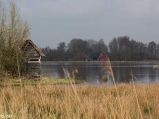 Friesland 23